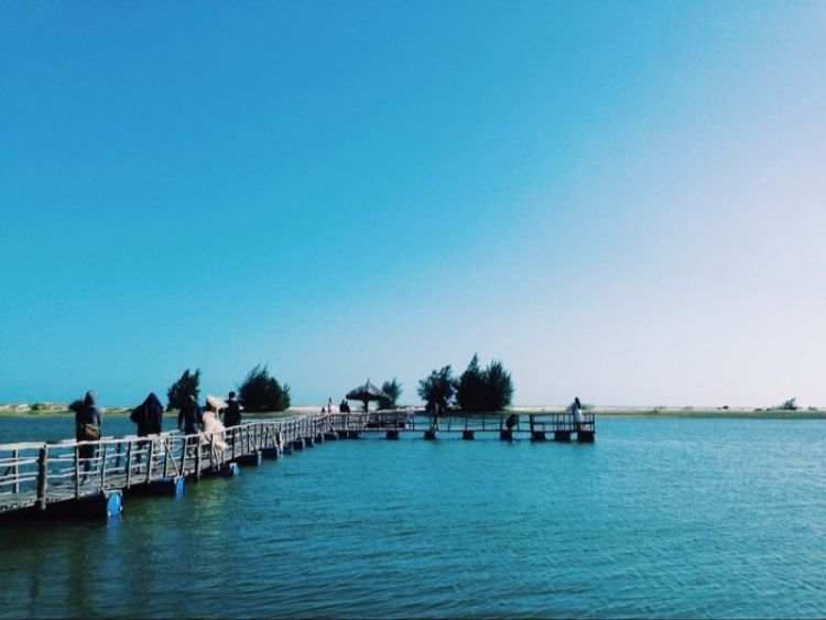 hồ tràm hồ cốc
